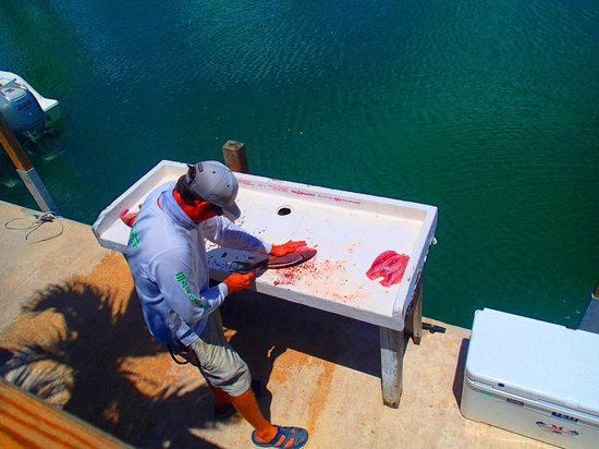 Last Cast Charters: filleting the snapper