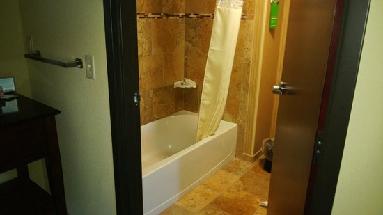 Hampton Inn & Suites Dickinson : Bathroom