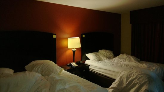 Hampton Inn & Suites Dickinson : Bedroom