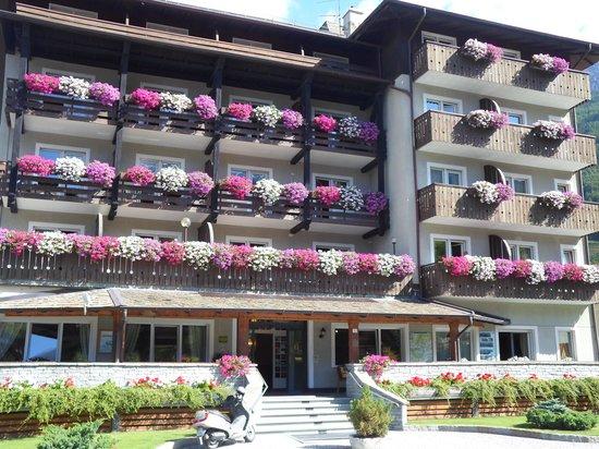 Hotel Baita dei Pini: Fronte Albergo