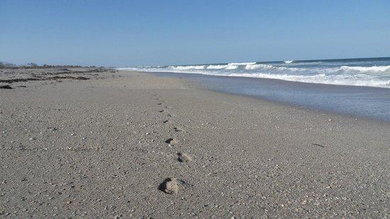 South Hutchinson Island Beach Parks