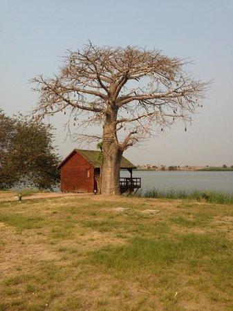 Mubanga Lodge: cabana 12 (uma das melhores)