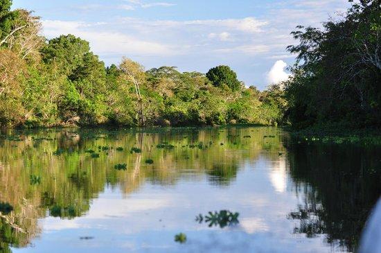 Muyuna Amazon Lodge: la nature
