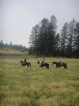 Red Horse Mountain Ranch: Getting ready to race up hill through a field of flowers.