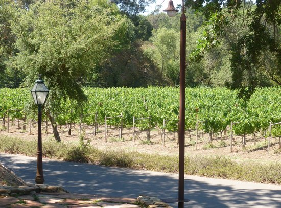 Hendry Ranch Wines: The view from the front porch