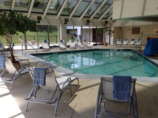 Sheraton Detroit Novi: Pool