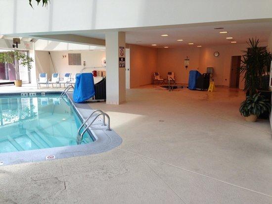 Sheraton Detroit Novi: Hot tub
