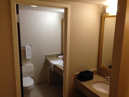 Sheraton Detroit Novi: Bathroom shot
