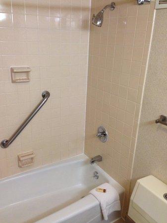Sheraton Detroit Novi : Bathroom shot 2