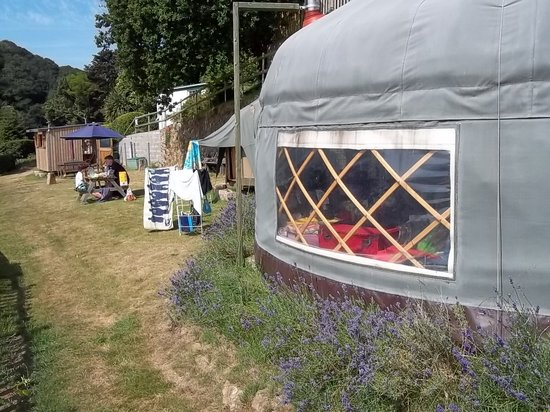 Jersey Yurt Holidays: Ship Ahoy, with mini yurt and Potato Shed in background
