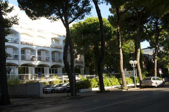 Picture hotel Saraceno