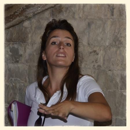 Arenes de Nimes: la guide qui vous explique tout sur ces arenes
