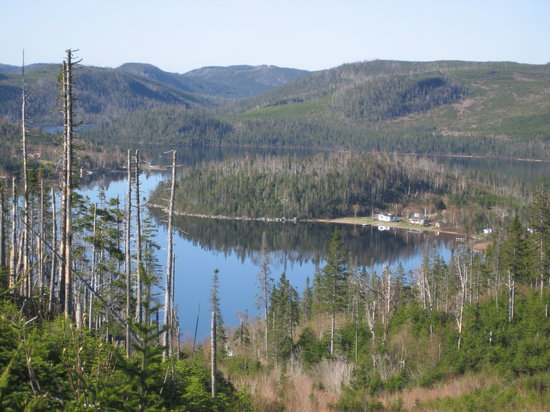 Bonne Bay Cottages: Amazing Scenery Close By