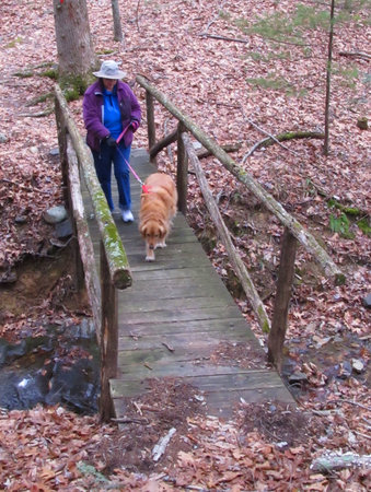 Douthat State Park: Hiking Trail