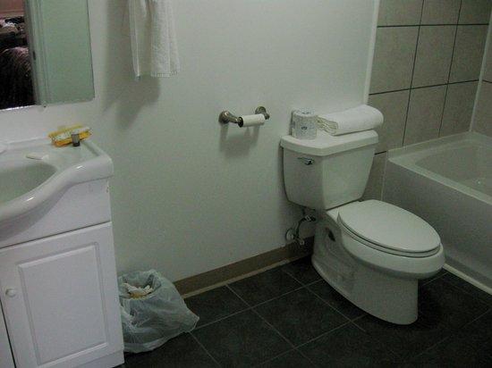 The Martin Arms: Bathroom