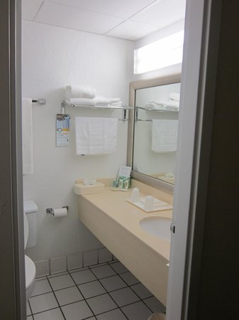 Quality Inn & Suites Event Center: small bathroom