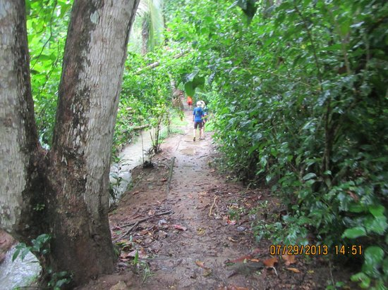 Playa Chiquita Lodge: pathway to the beach