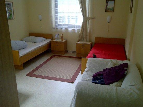 My room in the Obertrauner Hof!