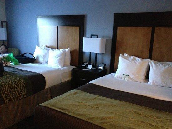 Comfort Inn & Suites I-10 Airport: Camas muy comodas