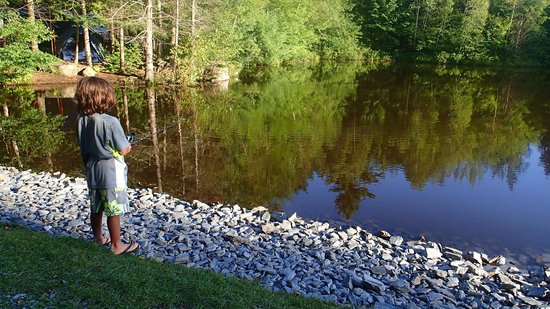 Moose Hillock Campground: the fishing pond. lots of crayfish! the kids love it.