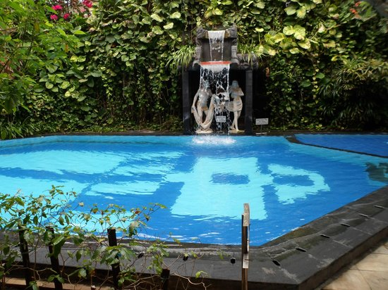 Green Garden Hotel: the pool
