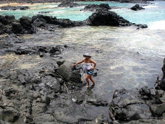 Ilhatour: Tartaruga petrificada