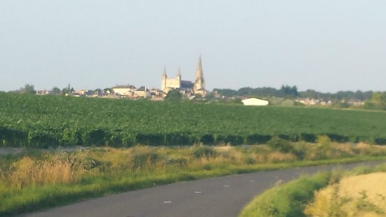 Les Fleurs Holiday Gites: Puys de Notre Dame (can see from gite) - try cycling there