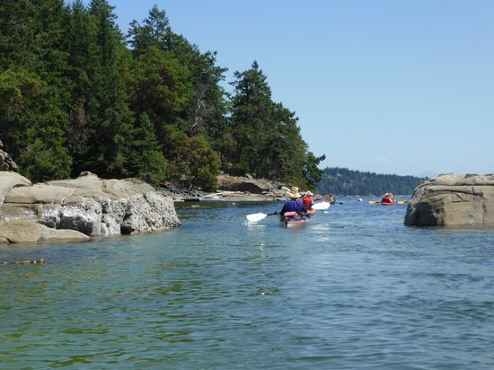 Nanaimo, Canada: Thanks to the tides we got to go through this little pass.