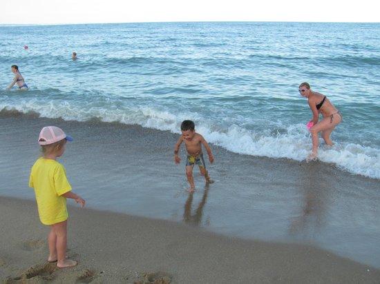 Palm Beach Hotel: пляж