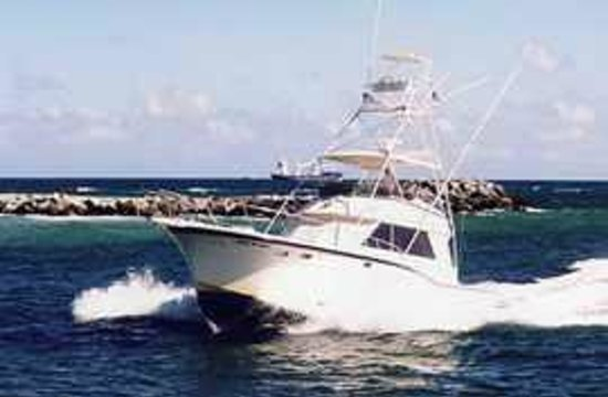 Marlin My Darlin/ All- Inclusive Sportfishing
