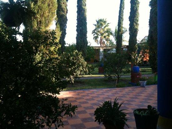 La Malanca Hotel & Spa: Jardines