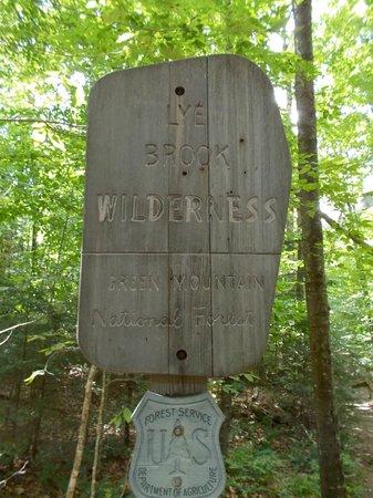 Lye Brook Falls: Lye Brook Fall sign