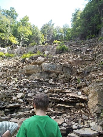 Lye Brook Falls: Not the waterfall - walk for another five minutes pass this