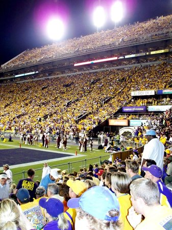 LSU Tiger Stadium: A View from our seats in the South End Zone
