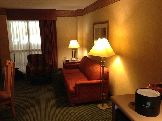 Embassy Suites by Hilton Omaha - Downtown/Old Market: Pullout sofa