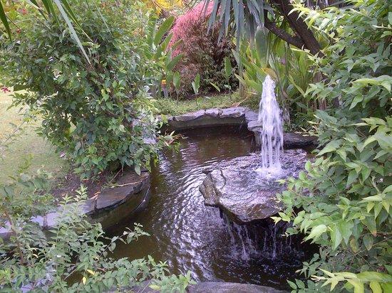 Kariwak Village Holistic Haven and Hotel: Garden Fountain