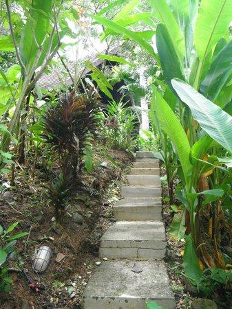 Oxygen Jungle Villas: Sendero intimo hacia la habitación