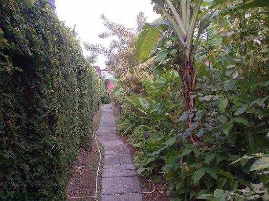 Kariwak Village Holistic Haven and Hotel: Garden Walkway
