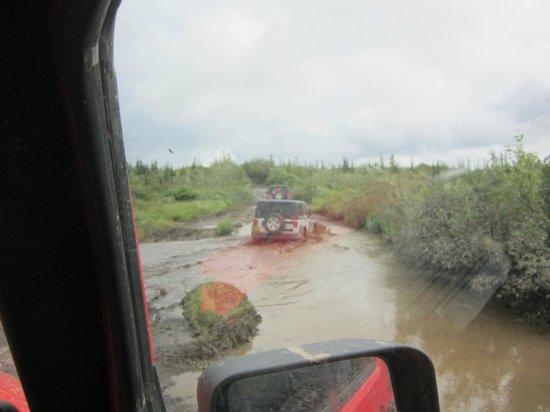 Denali Jeep Excursions: Hit the gas!