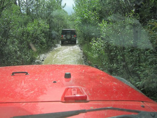 Denali Jeep Excursions: Getting wet