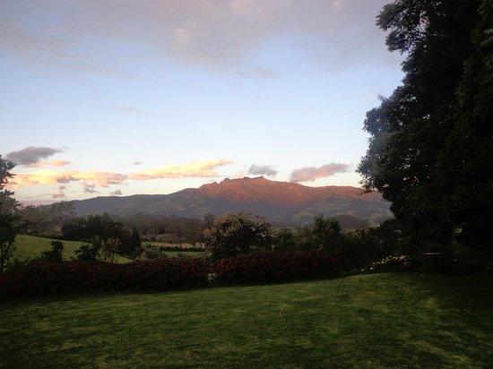 Hacienda La Alegria: Vista desde la habitacion