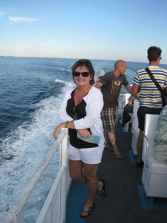 Liberty Hill Inn : Whale watching Sunset Cruise - Provincetown MA