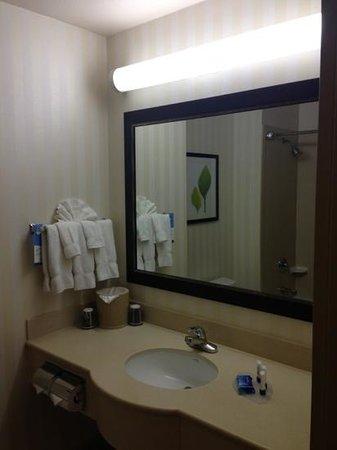 Fairfield Inn & Suites Napa American Canyon : guest bathroom