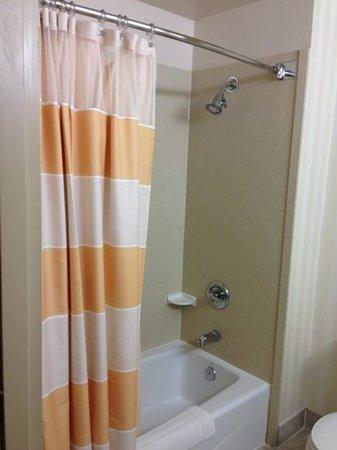 Fairfield Inn & Suites Napa American Canyon : shower tub combination