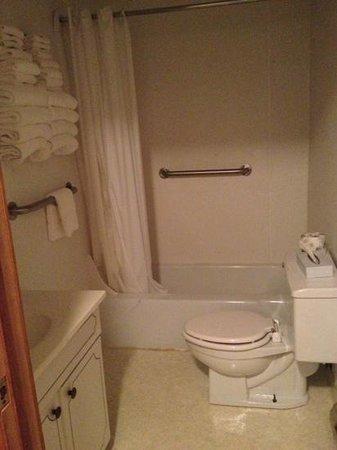 Budget Host Crestview Inn : The bathroom