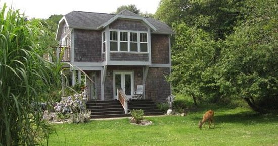 China Beach Retreat: View of detached Audubon House with visiting deer