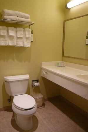 Comfort Inn & Suites Creswell: Bathroom