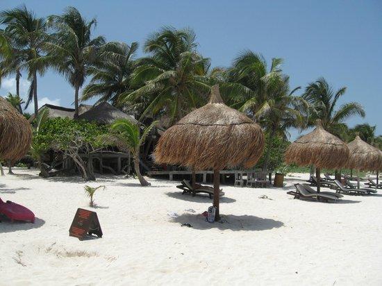 La Zebra Colibri Boutique Hotel: paradise for the day