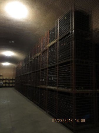 Finca Sala Vive by Freixenet Mexico: Underground storage at 25 metres.