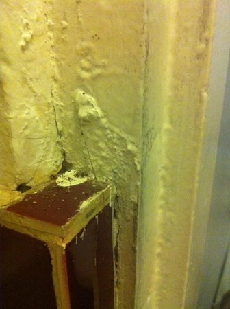 Haus Chandra Hotel : Bathroom wall with dirt on the surface